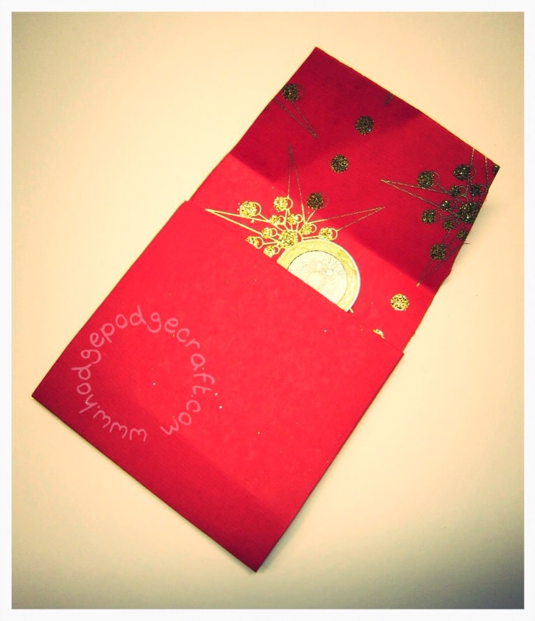 CNY lucky red money envelopes