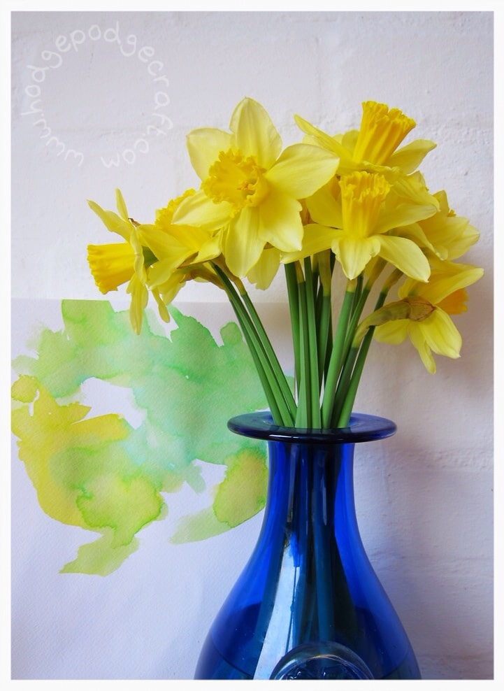 Watercolour daffodils