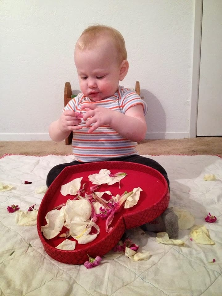 playing with petals baby sensory
