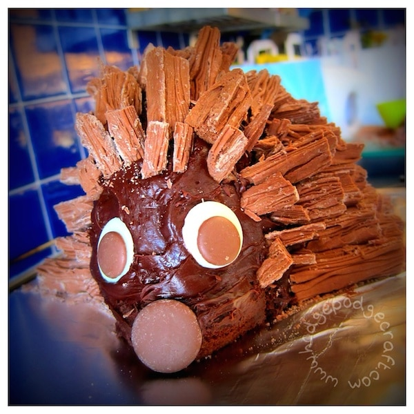 the best chocolate hedgehog cake recipe