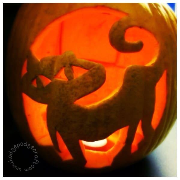 Cat carved pumpkin