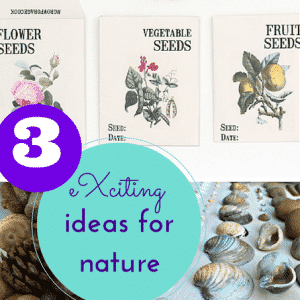 eXciting ideas, inspired by nature!