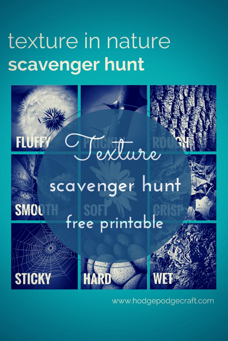 A scavenger hunt exploring texture in nature